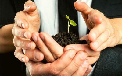 Votre stratégie de lead nurturing en 5 étapes